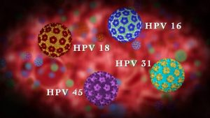 original_hpv-infection